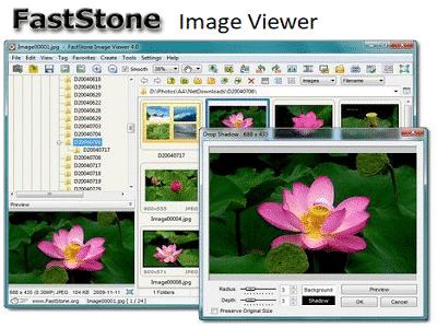 Téléchargez FastStone Image Viewer (Gratuit)