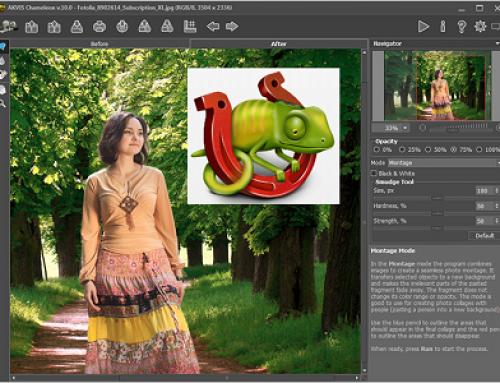 AKVIS Chameleon, Photo Software.
