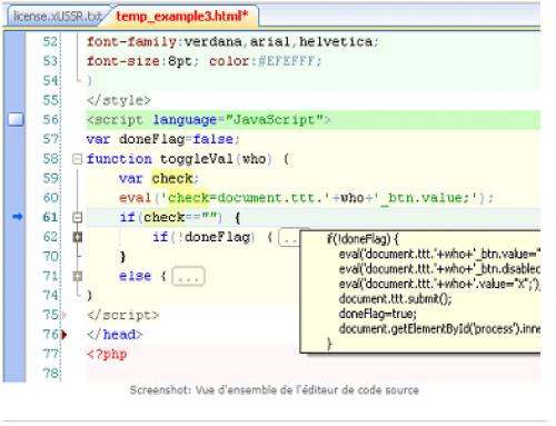 HippoEdit, Editeur de code