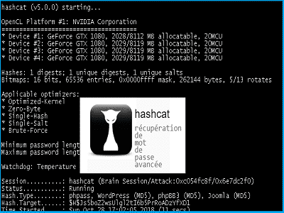 Téléchargez Hashcat (Gratuit)